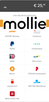 Picture of Mollie All Payment Methods plug-in for nopCommerce